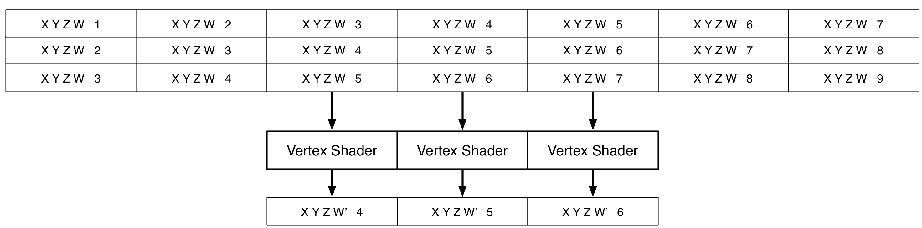 Vertex Shader Attributes