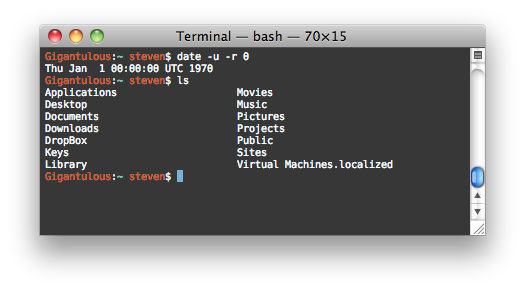 Regular bash terminal